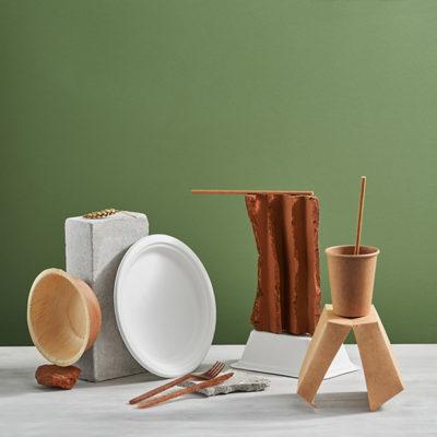 Pojemniki naczynia jednorazowe dla gastronomii