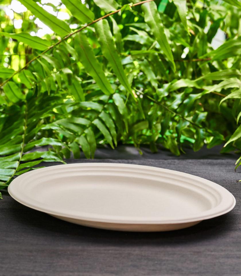 biały talerz owalny z trzciny cukrowej