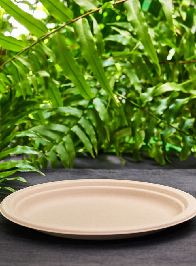 duży talerz z trzciny cukrowej