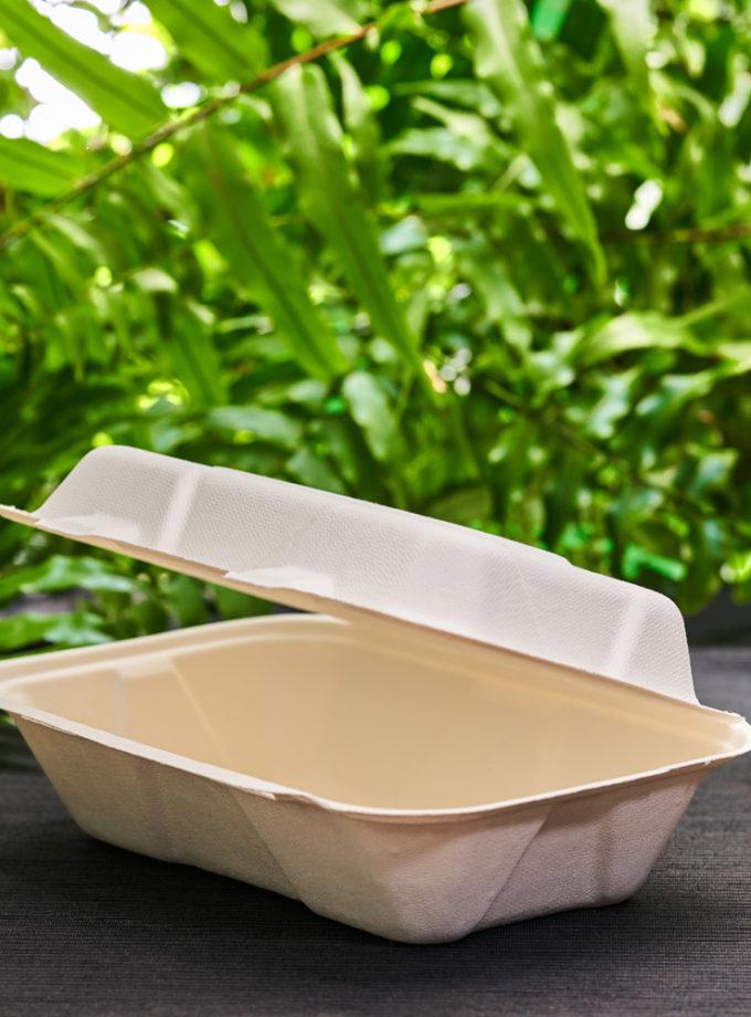 niedzielony box z trzciny cukrowej