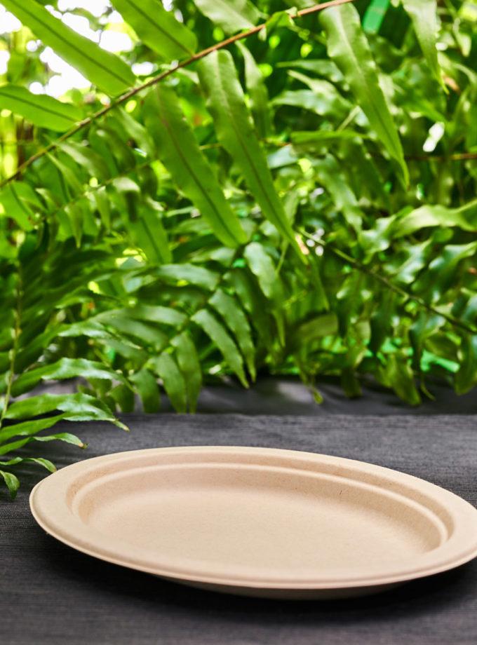 jednorazowe talerze ekologiczne talerz owalny z brązowej trzciny cukrowej